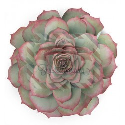Fustella Sizzix Framelits Large Succulent