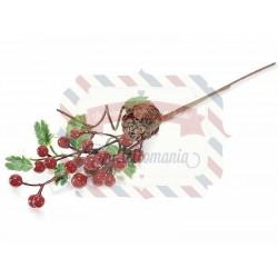 Ramo di vischio con bacche rosse e pigna